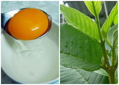 cách chữa hôi nách bằng trứng gà